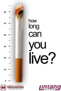 anti-smoking-5142